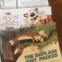 Calvin & Hobbes cartoon books Saint Charles, 63301