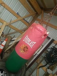 red and green Everlast leather heavy bag