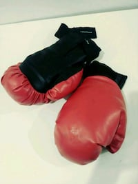 Protocol boxing gloves Chandler, 85286