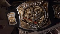 gold-colored and black championship belt Falling Waters, 25419
