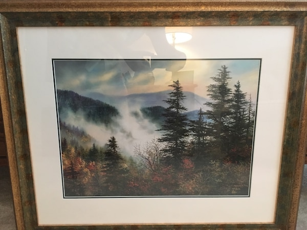 Framed Art Limited Edition signed by artist