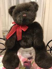 Rare GUND bear Waterloo, N2L 1V9