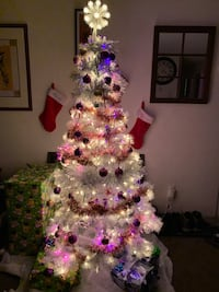 Christmas tree and all the decorations