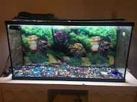 59 gallon fish tank.  All you need to add is water and fish Shoreview, 55126