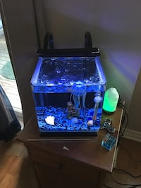 Fish aquarium all accessories included tank pump lighting 2 couleurs blue and white Laval, H7K 3X8