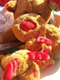 green and red bear plush toy Apache Junction