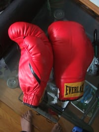 size 16 boxing glove from Everlast,4314 Mississauga