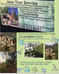 Landscaping & tree service Annapolis