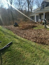LEAF CLEANUP Baltimore
