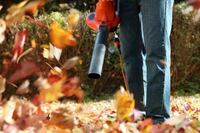 LEAF COLLECTION/REMOVAL $40 and up! Hyattsville