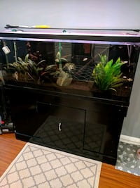 55 Gallon Fish Tank and Stand Burke, 22015
