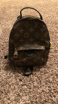 Black and brown louis vuitton backpack Sioux Falls, 57108