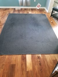 5×7 dark grey rug. well loved but still in decent shape. $10 Guelph, N1E 7K4