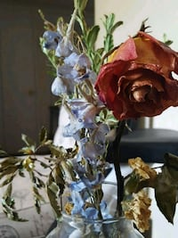 blue and red flower arrangement Tuscaloosa, 35405