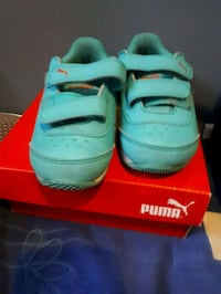 pair of teal Nike Air Max shoes with box Calgary, T2C 1Y8
