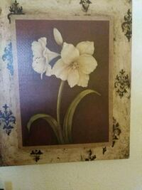white and pink flower painting Sacramento, 95838