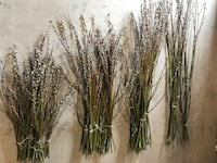 Long Willow branches, Fuzzy catkins, Wedding, Rustic Decor SAINTCATHARINES