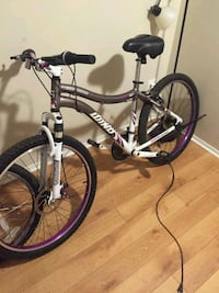 white and purple Schwinn hardtail mountain bike Centreville, 20120