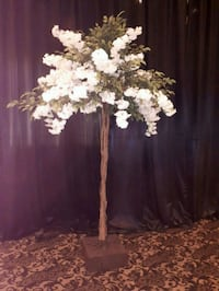 10ft tall trees Promo $75 RENTAL each