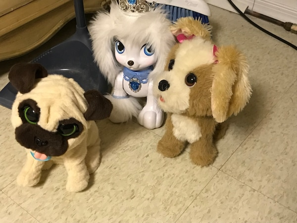 Fur real pets and place pet