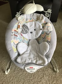 Fisher Price Baby Bouncer Raleigh, 27607