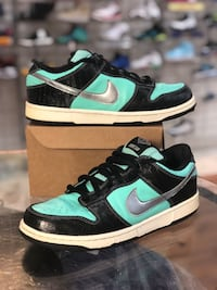 Tiffany Nike Sb Dunk Low size 10 Silver Spring, 20902