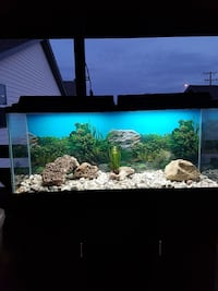 55g fish tank, with all accesoriea included