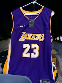 purple and yellow Lakers 24 jersey Greenville, 29605