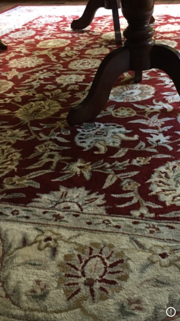 Rug--9x11- excellent condition !