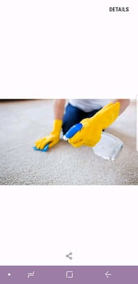 The cleaning lady East Gwillimbury, L9N 1A9