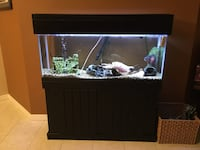 55 gallon fish tank with custom stand. All accessories included. Bought new 18 months ago for $900 Bradenton, 34212