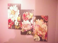 Set of 3 Flower Pictures  Ocala, 34471
