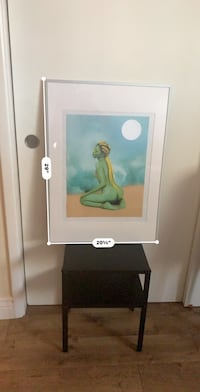 """Picture frame approx 29"""" x 20"""" San Jose, 95112"""