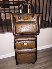 Adrienne Vittadini carry on luggage and matching bag CHICAGO