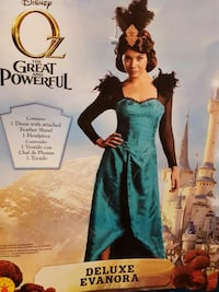 Great and powerful OZ woman large Burnsville, 55306