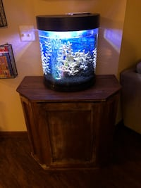 10 gal fish tank w/ custom cabinet and decorations Plymouth, 55447