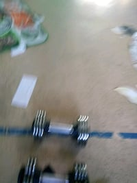 two gray adjustable dumbbells Panorama City, 91402