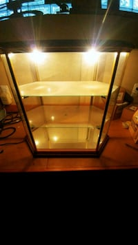 display cabinet case with lights.