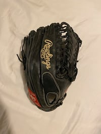 Rawlings Outfield Glove