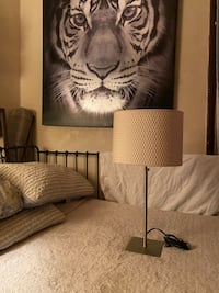 Retro Lamp and Tiger Painting