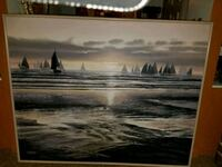 Picture 4-1ft x 5-1ft  Willow Springs, 60480