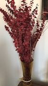 Golden yellow vase with red dried out eucalyptus ferns