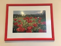 Framed Photo Wall Art :Poppies