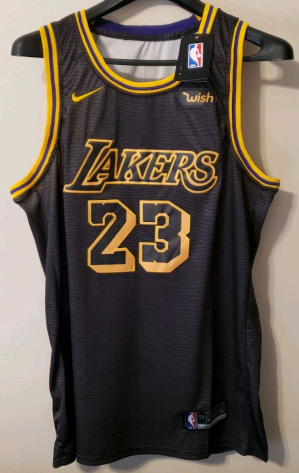 promo code 27b72 55de7 Lebron James LA Lakers Jersey