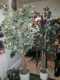 Pair of gorgeous 6foot + artificial trees
