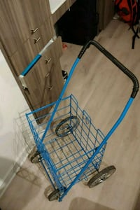 Grocery Shopping Cart Silver Spring, 20910