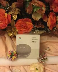 Google Home Mini Brampton, L7A 2R4