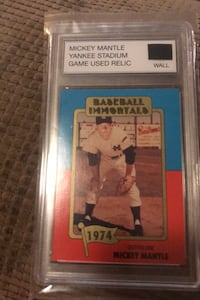 Mickey mantle wall piece