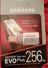 256 GB Samsung Evo Plus box