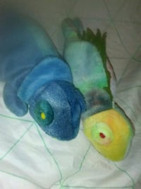 Iggy and Rainbow beanie baby RARE and retired Kenly, 27542